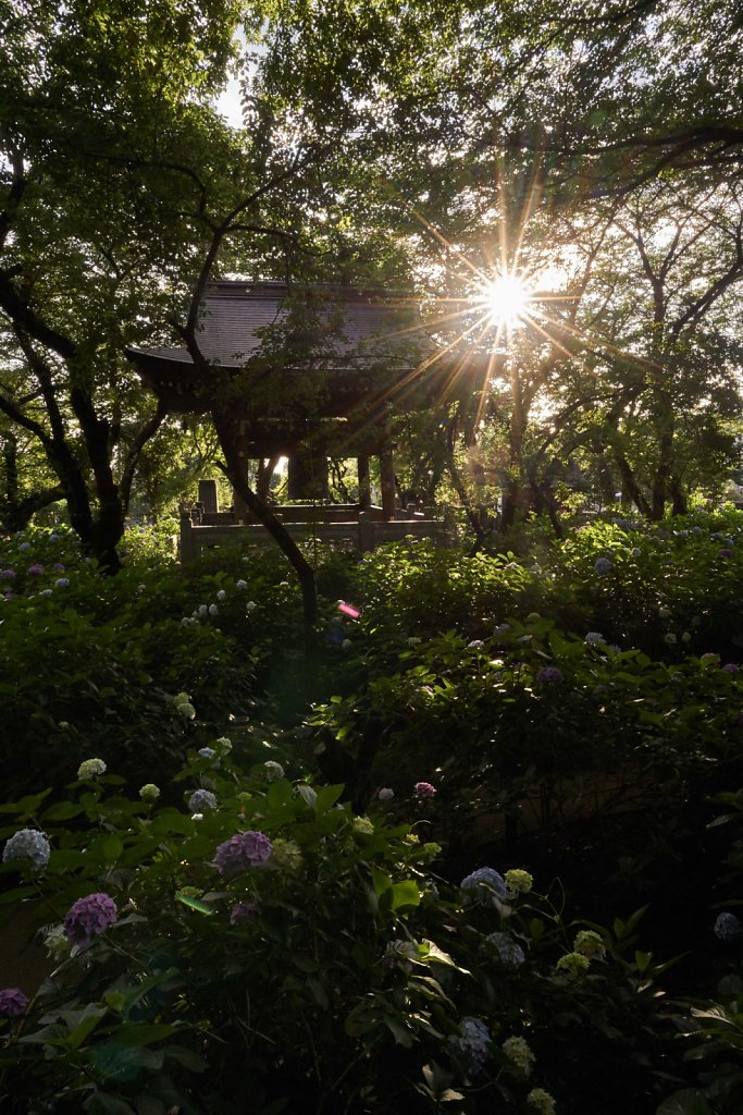 Morning sun over the morning bell