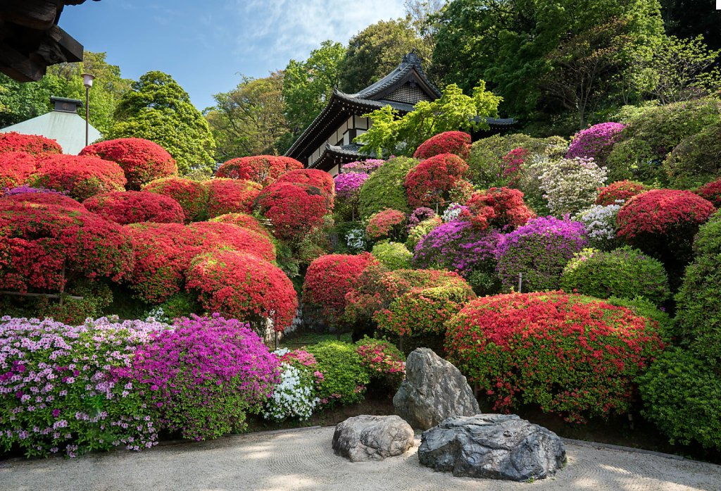 Togakuin, the Azalea Temple